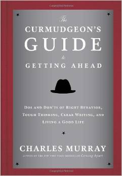 A Curmudgeon's Guide to Getting Ahead | RaeReads.com